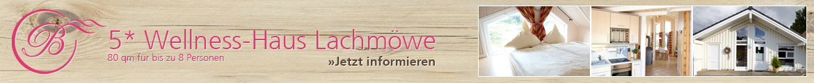 Wellness-Haus Lachmoewe